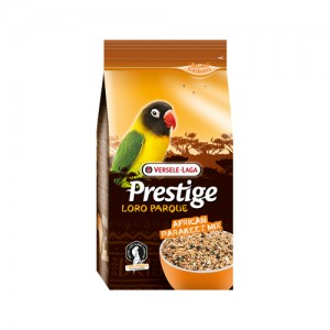 Prestige premium afrikaanse grote parkiet